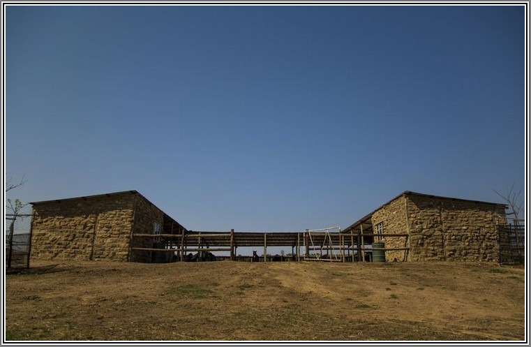 ventersberg-stables-1